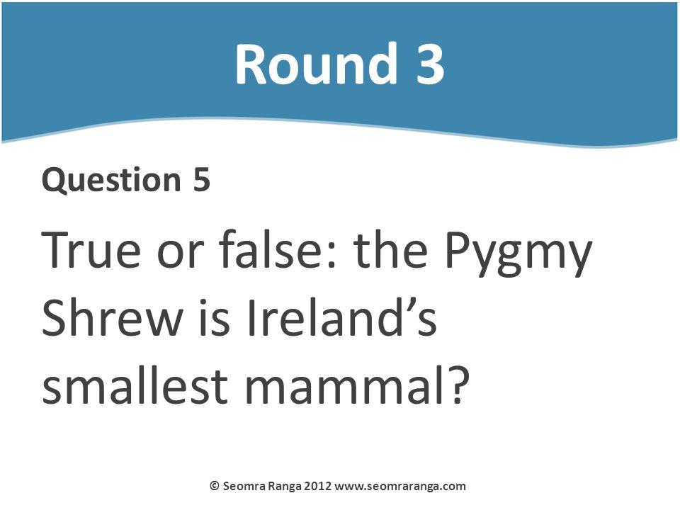 Round 3 Question 5 True or false: the Pygmy Shrew is Irelands smallest mammal? © Seomra Ranga 2012 www.seomraranga.com
