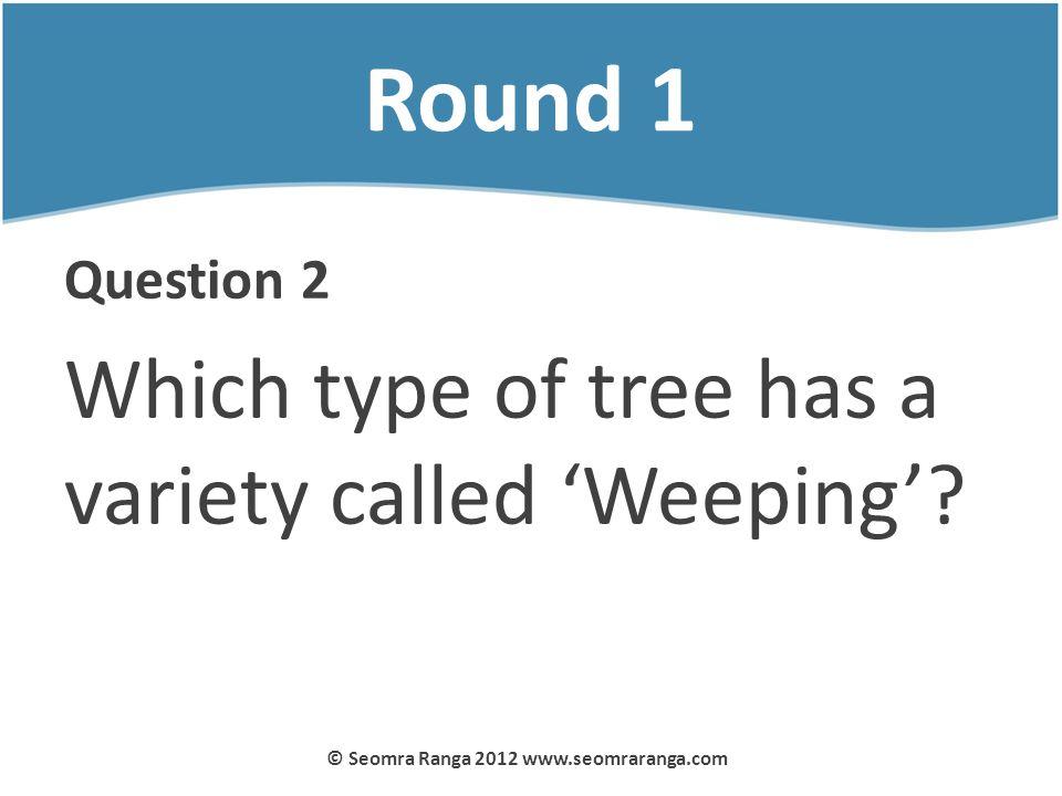 Round 1 Question 2 Which type of tree has a variety called Weeping? © Seomra Ranga 2012 www.seomraranga.com