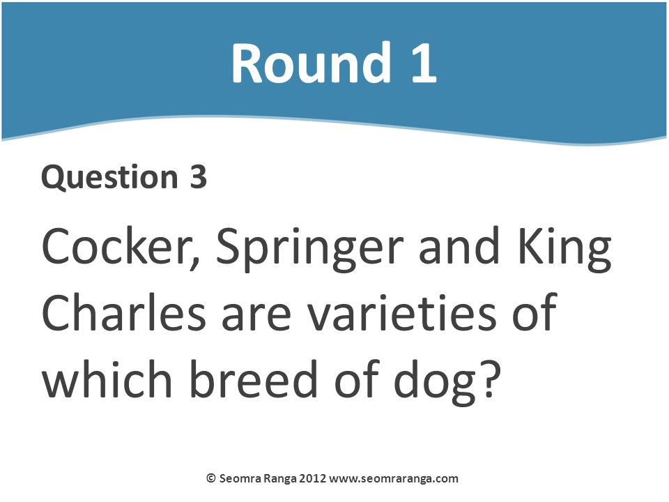 Round 1 Question 3 Cocker, Springer and King Charles are varieties of which breed of dog? © Seomra Ranga 2012 www.seomraranga.com