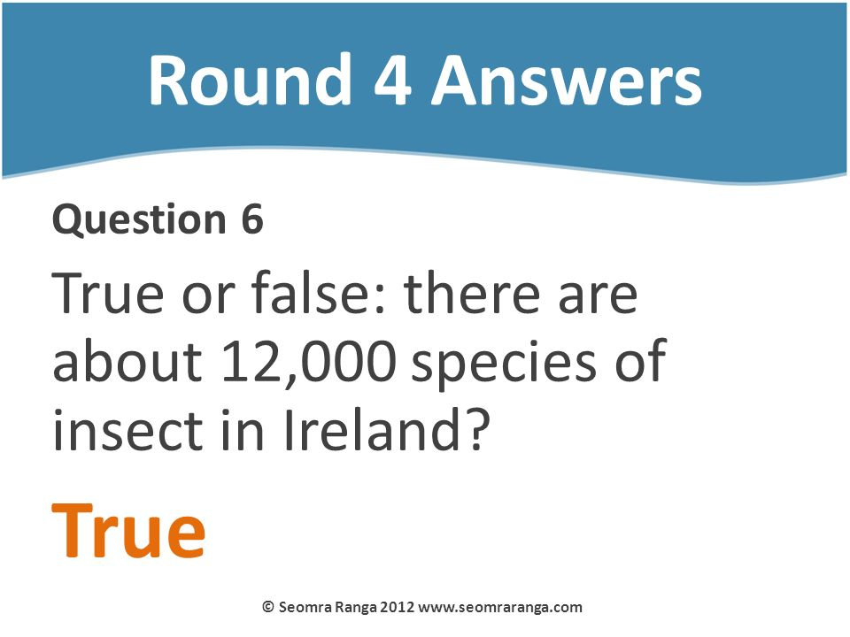 Round 4 Answers Question 6 True or false: there are about 12,000 species of insect in Ireland? True © Seomra Ranga 2012 www.seomraranga.com