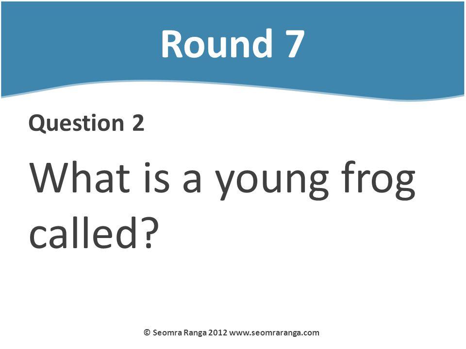 Round 7 Question 2 What is a young frog called? © Seomra Ranga 2012 www.seomraranga.com