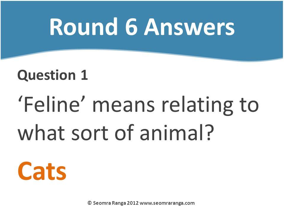 Round 6 Answers Question 1 Feline means relating to what sort of animal? Cats © Seomra Ranga 2012 www.seomraranga.com