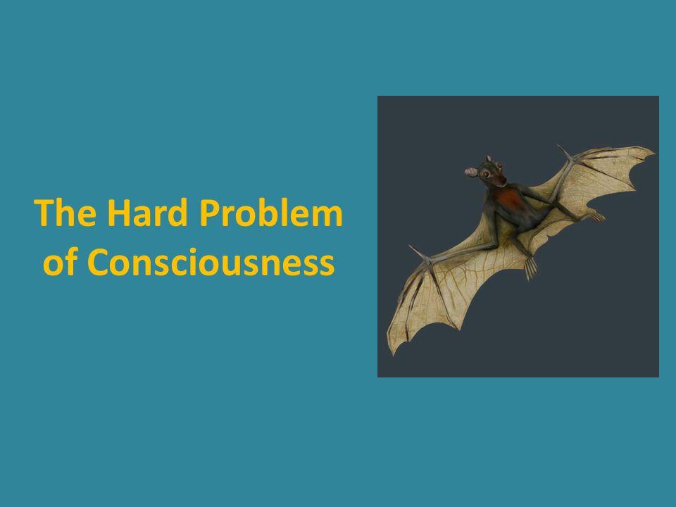 The Hard Problem of Consciousness