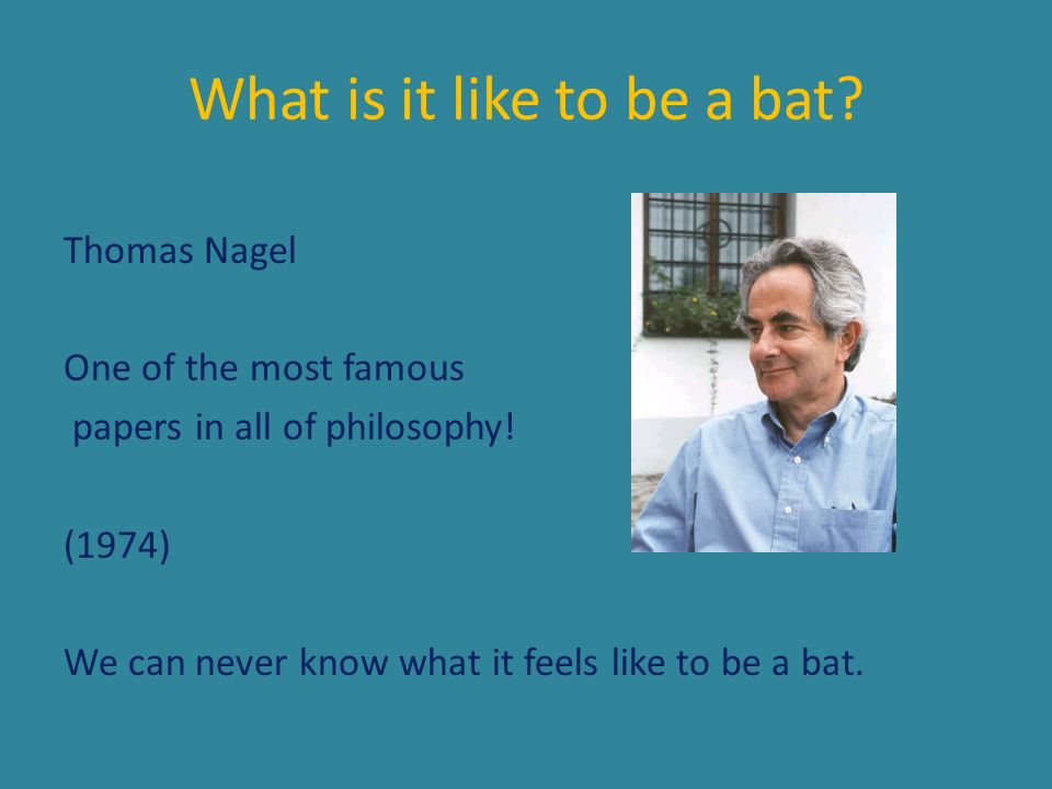 What is it like to be a bat? Thomas Nagel One of the most famous papers in all of philosophy! (1974) We can never know what it feels like to be a bat.