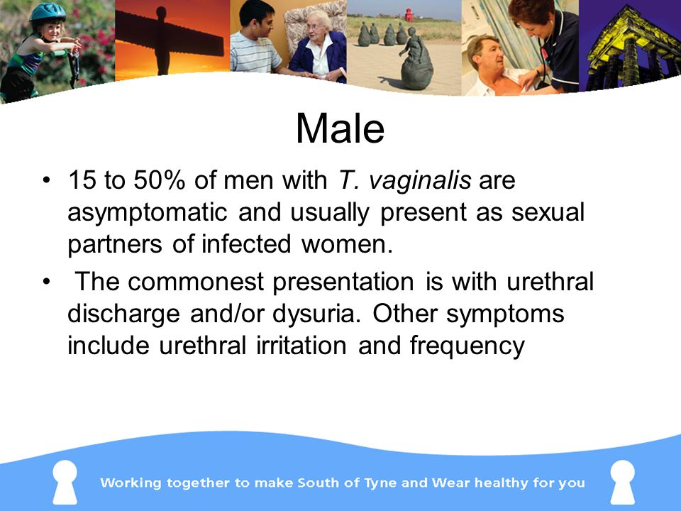 Male 15 to 50% of men with T. vaginalis are asymptomatic and usually present as sexual partners of infected women. The commonest presentation is with