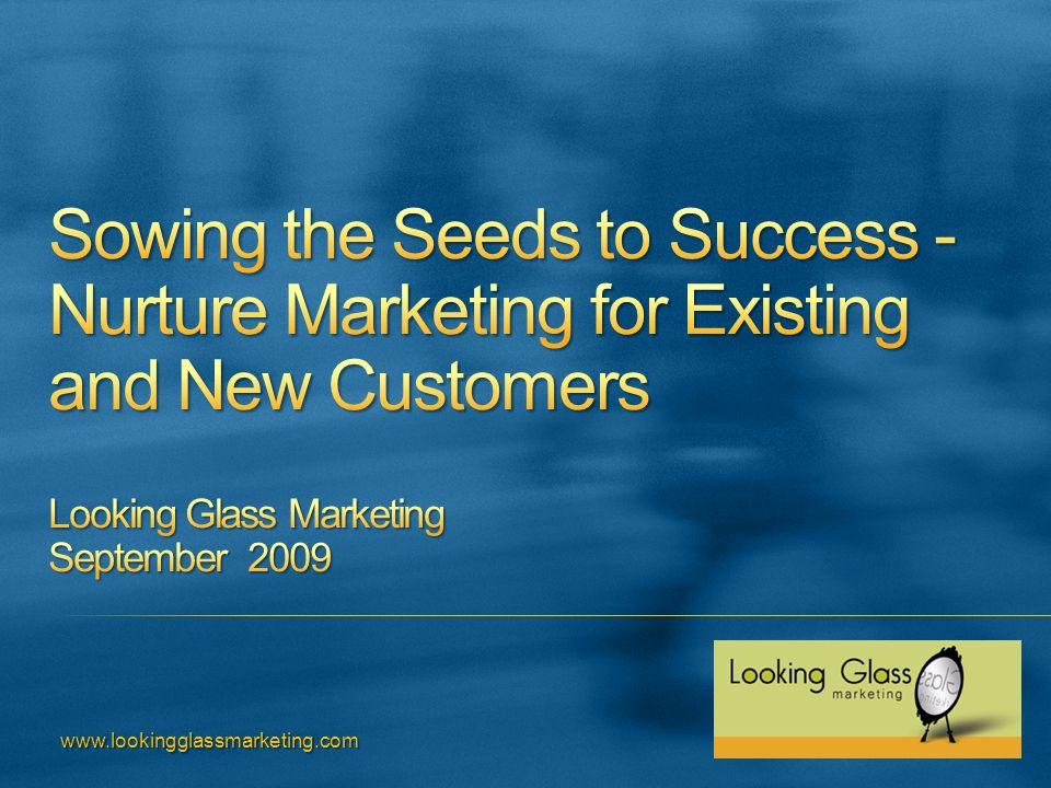 www.lookingglassmarketing.com