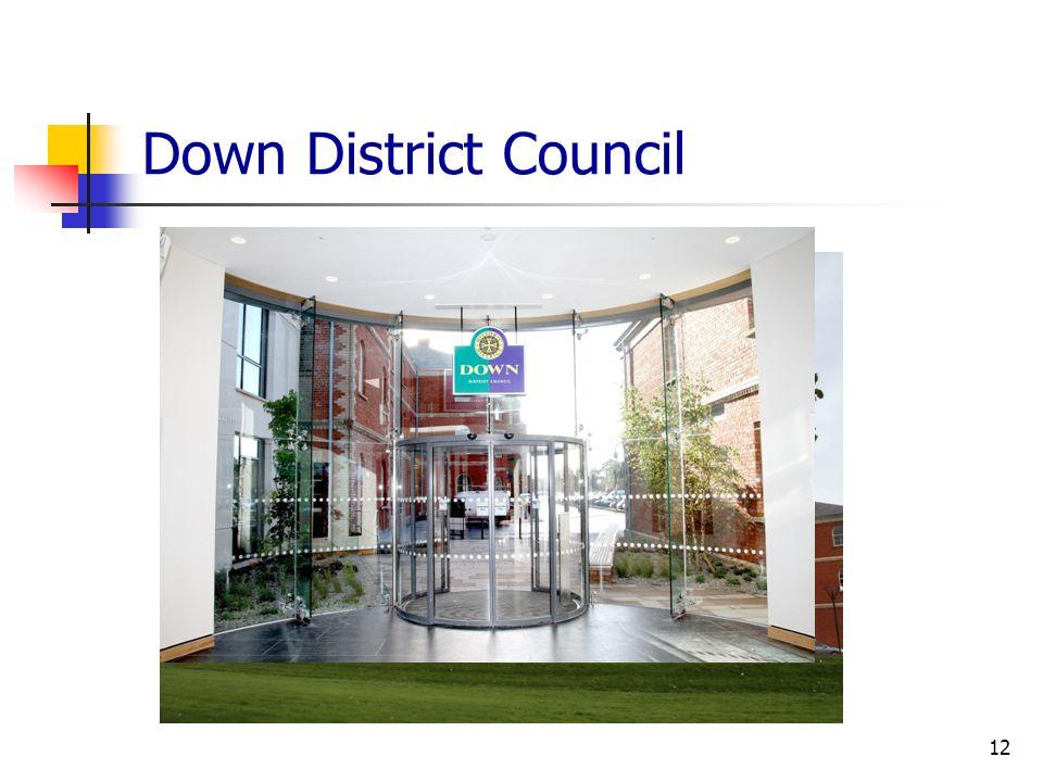 Down District Council 12