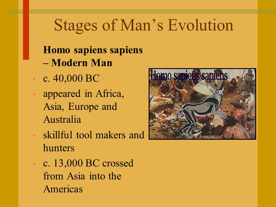 Stages of Mans Evolution Homo sapiens sapiens – Modern Man c. 40,000 BC appeared in Africa, Asia, Europe and Australia skillful tool makers and hunter