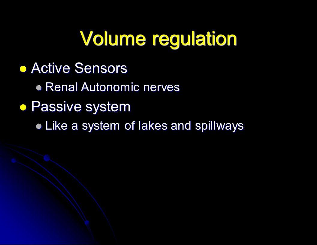 Volume regulation Active Sensors Active Sensors Renal Autonomic nerves Renal Autonomic nerves Passive system Passive system Like a system of lakes and spillways Like a system of lakes and spillways