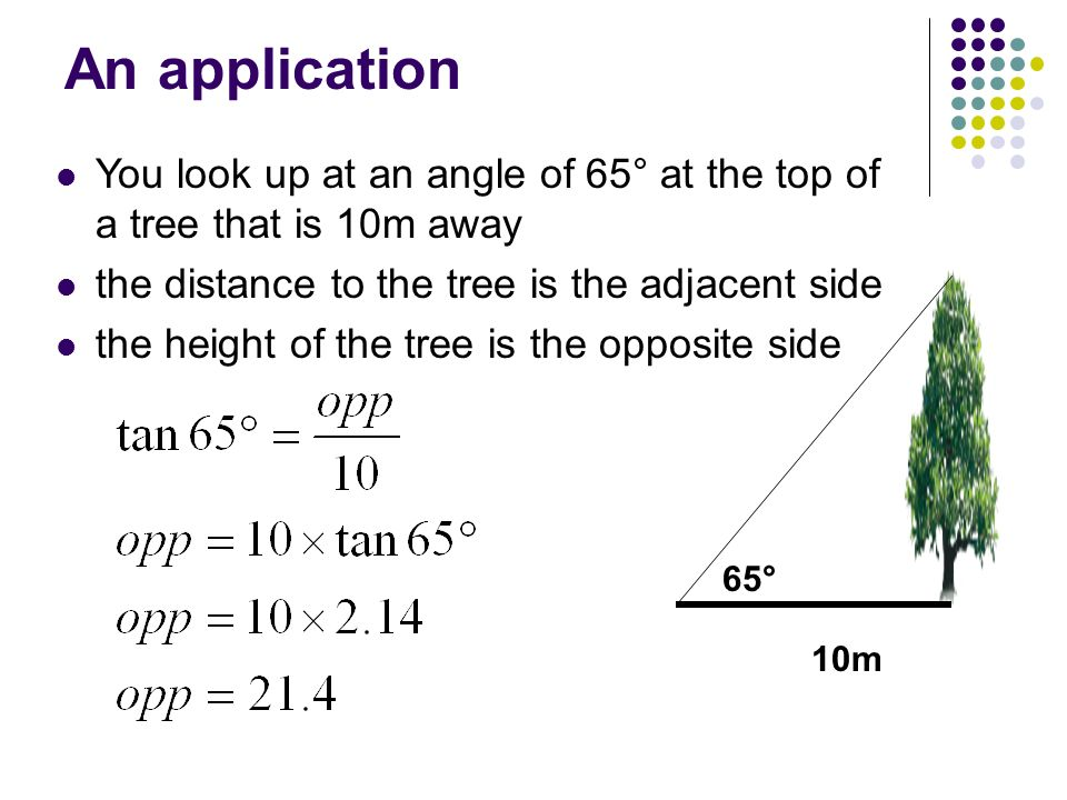 An application 65° 10m You look up at an angle of 65° at the top of a tree that is 10m away the distance to the tree is the adjacent side the height o