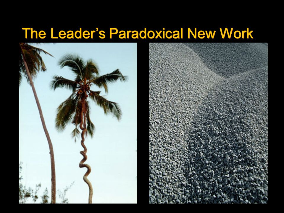 The Leaders Paradoxical New Work