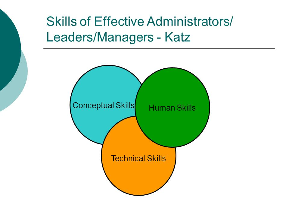 Conceptual Skills - Katz Ability to see the enterprise as a whole (the big picture); Recognizing how various functions of the organization interrelate and how changes in one part affect all the others; Visualizing internal and external relationships; Abstract thinking; Example: Articulating a vision for the organization.