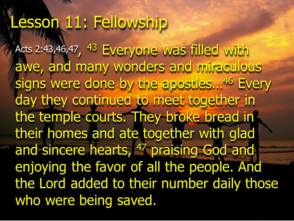 Lesson 11: Fellowship Acts 2:43,46,47, 43 Everyone was filled with awe, and many wonders and miraculous signs were done by the apostles… 46 Every day