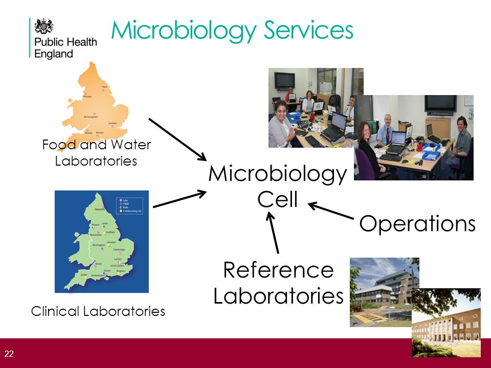 Microbiology Services Microbiology Cell Reference Laboratories Food and Water Laboratories Clinical Laboratories Operations 22