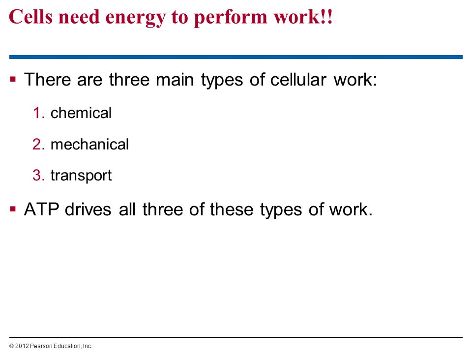 Cells need energy to perform work!! There are three main types of cellular work: 1.chemical 2.mechanical 3.transport ATP drives all three of these typ