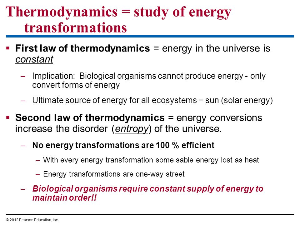 Thermodynamics = study of energy transformations First law of thermodynamics = energy in the universe is constant –Implication: Biological organisms c