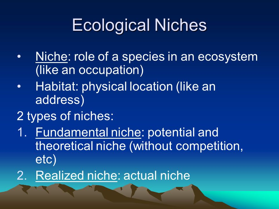 Ecological Niches Niche: role of a species in an ecosystem (like an occupation) Habitat: physical location (like an address) 2 types of niches: 1.Fund