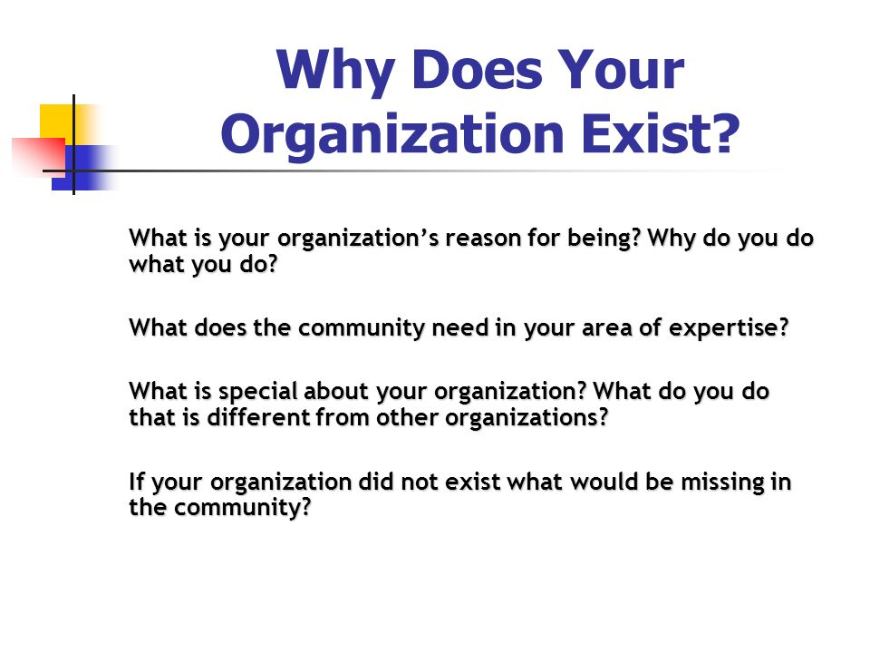 Why Does Your Organization Exist? What is your organizations reason for being? Why do you do what you do? What does the community need in your area of