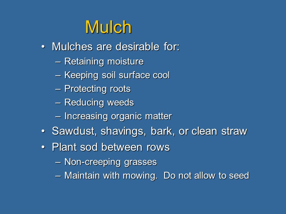 Mulch Mulches are desirable for:Mulches are desirable for: –Retaining moisture –Keeping soil surface cool –Protecting roots –Reducing weeds –Increasin