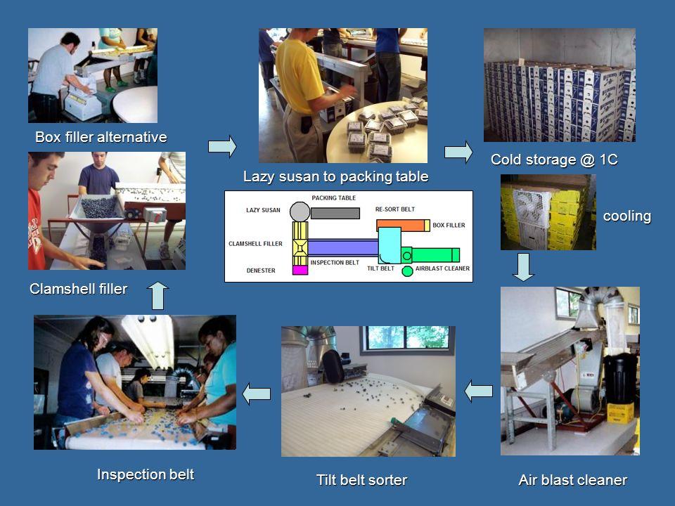 cooling Air blast cleaner Tilt belt sorter Inspection belt Clamshell filler Box filler alternative Lazy susan to packing table Cold storage @ 1C