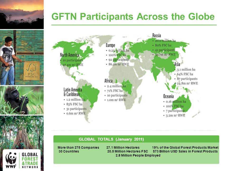 GFTN Participants Across the Globe GLOBAL TOTALS (January 2011) More than 275 Companies27.1 Million Hectares19% of the Global Forest Products Market 30 Countries20.5 Million Hectares FSC $73 Billion USD Sales in Forest Products 2.8 Million People Employed