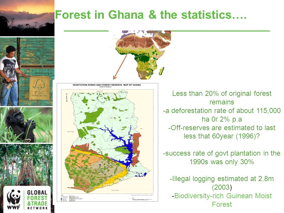 The results of years of unsustainable exploitation Forest burning Needless destruction Illegal logging Degraded Forest