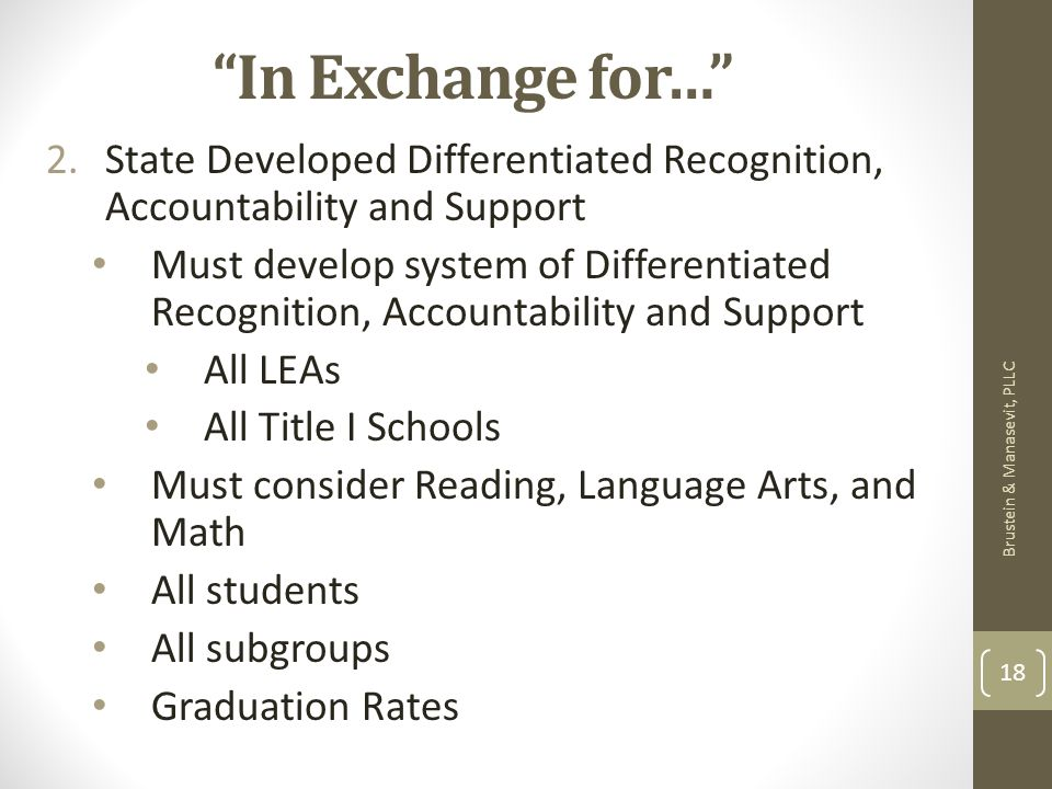 In Exchange for… 2.State Developed Differentiated Recognition, Accountability and Support Must develop system of Differentiated Recognition, Accountability and Support All LEAs All Title I Schools Must consider Reading, Language Arts, and Math All students All subgroups Graduation Rates Brustein & Manasevit, PLLC 18