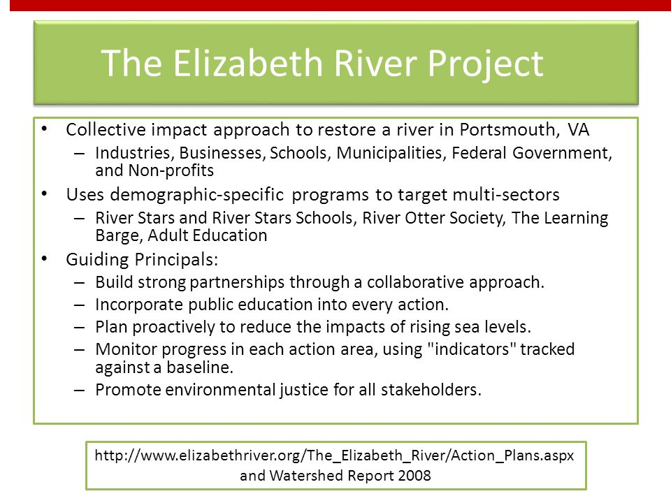 The Elizabeth River Project Collective impact approach to restore a river in Portsmouth, VA – Industries, Businesses, Schools, Municipalities, Federal Government, and Non-profits Uses demographic-specific programs to target multi-sectors – River Stars and River Stars Schools, River Otter Society, The Learning Barge, Adult Education Guiding Principals: – Build strong partnerships through a collaborative approach.