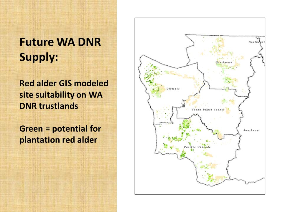 Future WA DNR Supply: Red alder GIS modeled site suitability on WA DNR trustlands Green = potential for plantation red alder