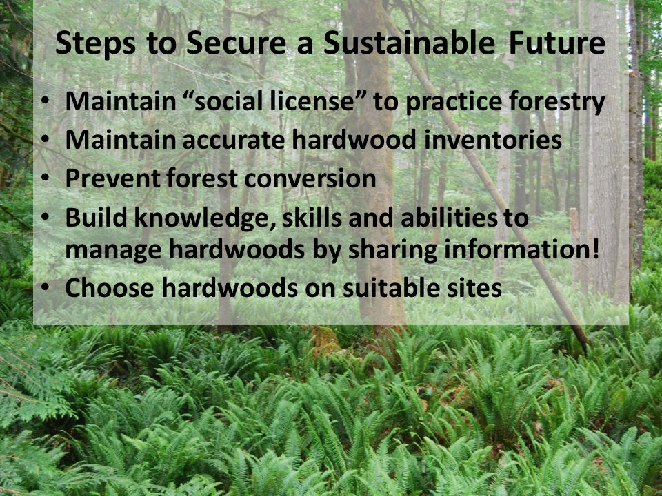 Steps to Secure a Sustainable Future Maintain social license to practice forestry Maintain accurate hardwood inventories Prevent forest conversion Bui
