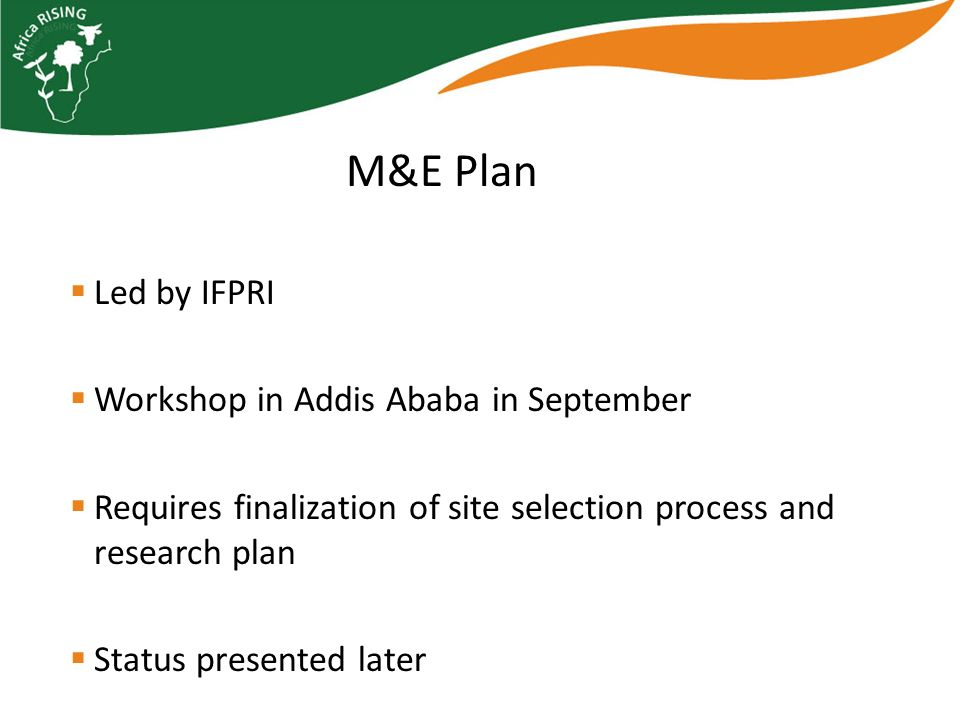 Led by IFPRI Workshop in Addis Ababa in September Requires finalization of site selection process and research plan Status presented later M&E Plan