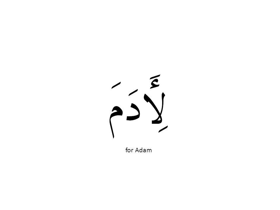 for Adam