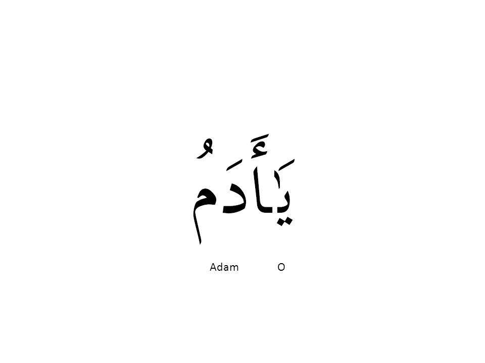 Adam O