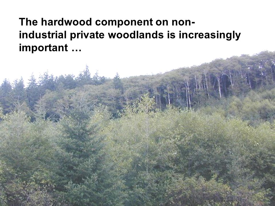 The hardwood component on non- industrial private woodlands is increasingly important …