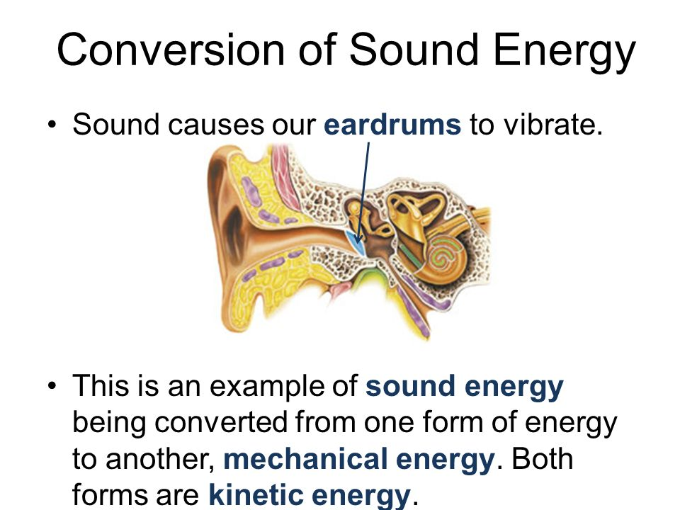 Conversion of Sound Energy Sound causes our eardrums to vibrate. This is an example of sound energy being converted from one form of energy to another