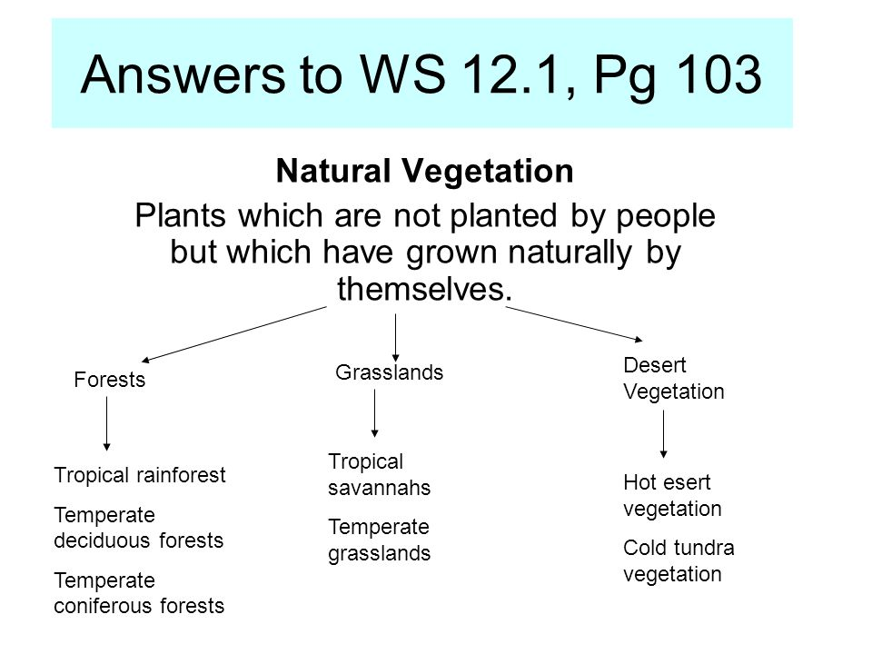 WS 12.1, Pg 104 b)i.Climate, particularly rainfall and temperature.