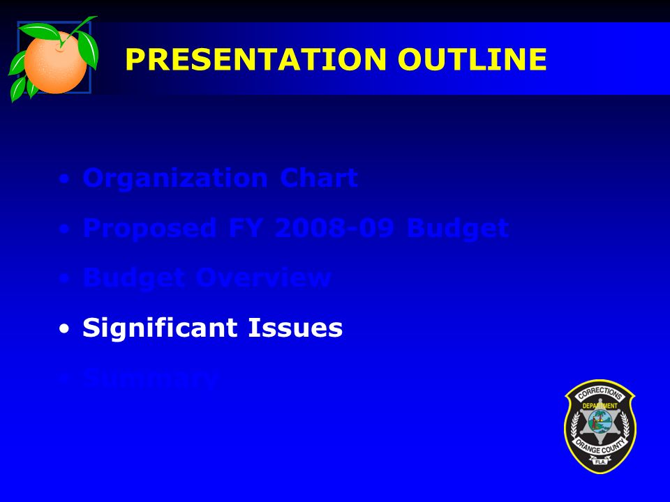 Organization Chart Proposed FY 2008-09 Budget Budget Overview Significant Issues Summary PRESENTATION OUTLINE