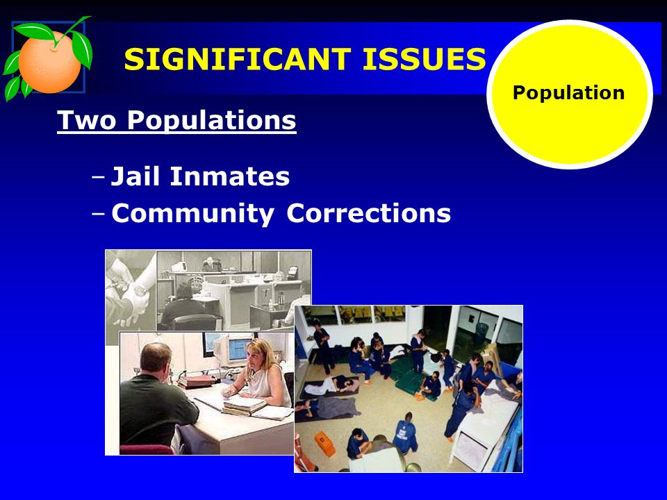 SIGNIFICANT ISSUES Two Populations –Jail Inmates –Community Corrections Population