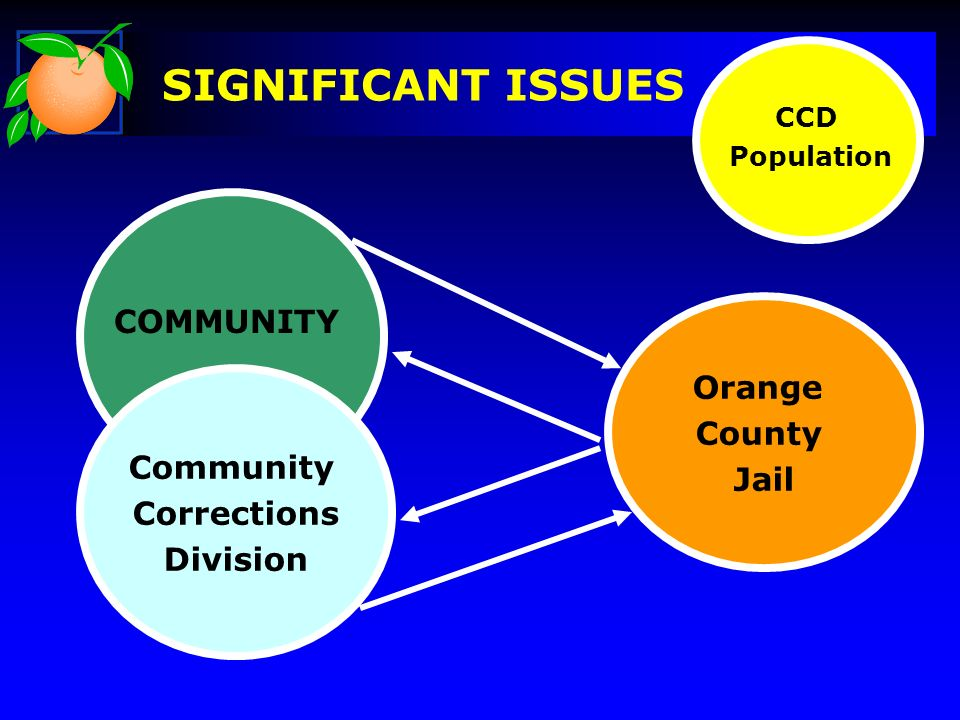 Orange County Jail Community Corrections Division SIGNIFICANT ISSUES CCD Population COMMUNITY