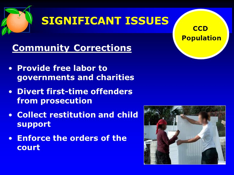 SIGNIFICANT ISSUES Community Corrections Provide free labor to governments and charities Divert first-time offenders from prosecution Collect restitution and child support Enforce the orders of the court CCD Population