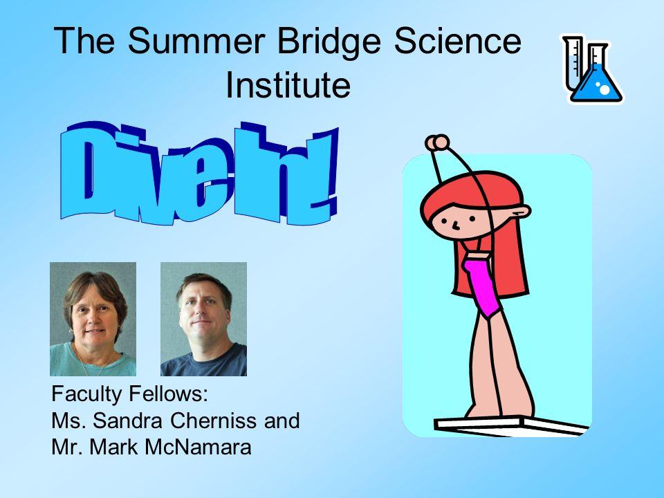 The Summer Bridge Science Institute Faculty Fellows: Ms. Sandra Cherniss and Mr. Mark McNamara