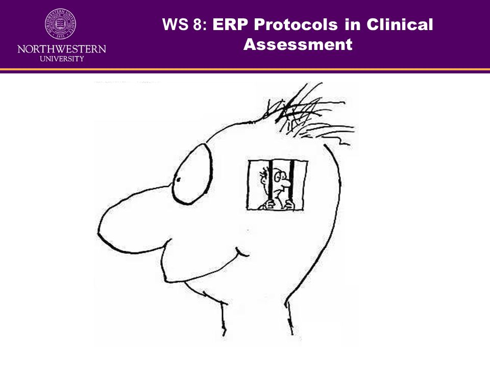 WS 8: ERP Protocols in Clinical Assessment What we will learn: Basics of ERP method: ERP origins, physiology, modalities, major ERP components, and pr