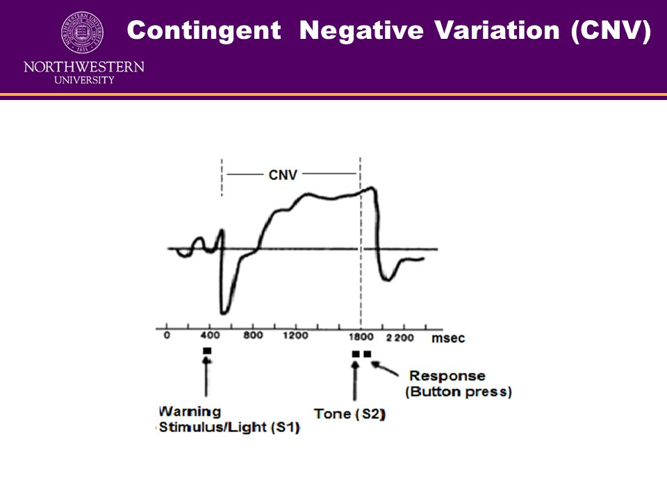 Contingent Negative Variation (CNV) Name: Contingent Negative Variation (CNV) (first described by Walter and colleagues in 1964). Paradigm: There are