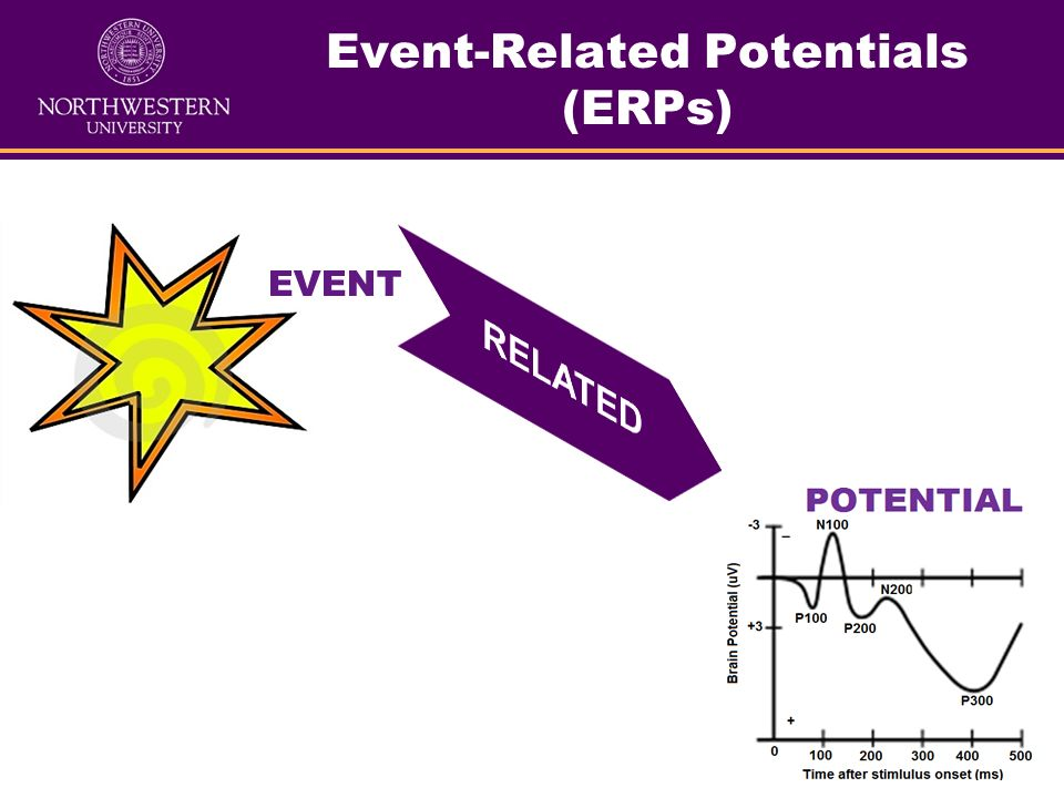 Event-Related Potentials (ERPs) EVENT