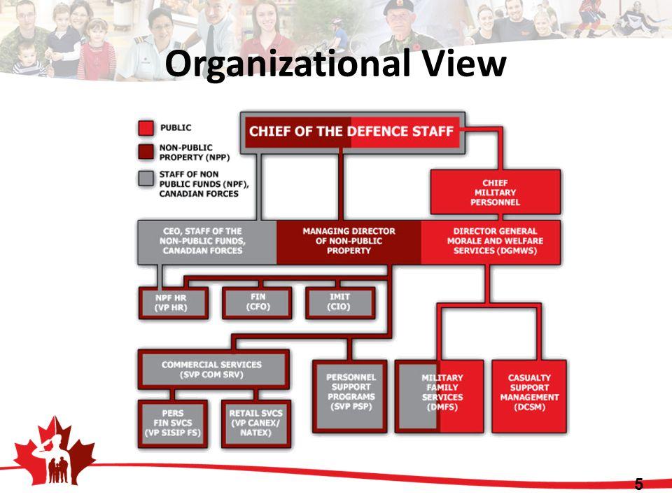 5 Organizational View