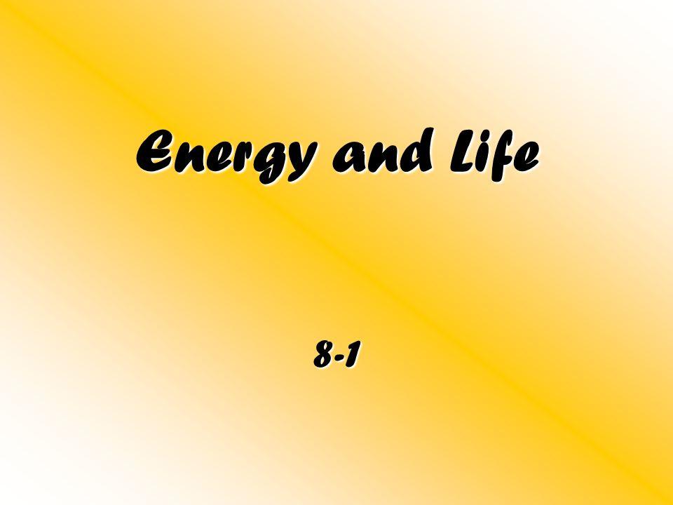 Energy and Life 8-1