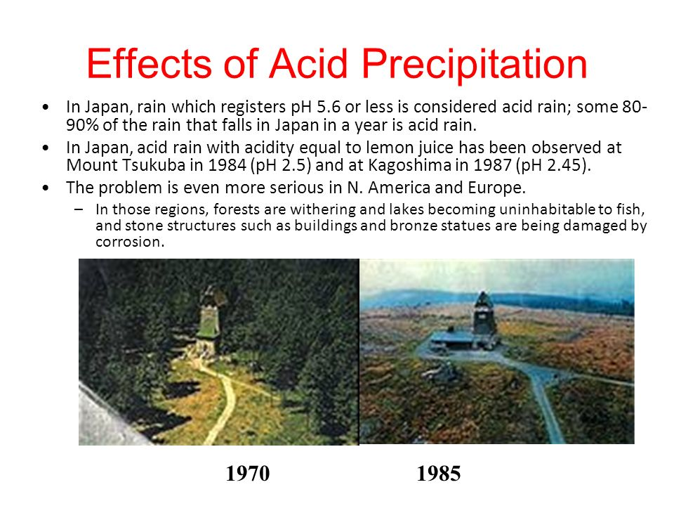 Effects of Acid Precipitation In Japan, rain which registers pH 5.6 or less is considered acid rain; some 80- 90% of the rain that falls in Japan in a