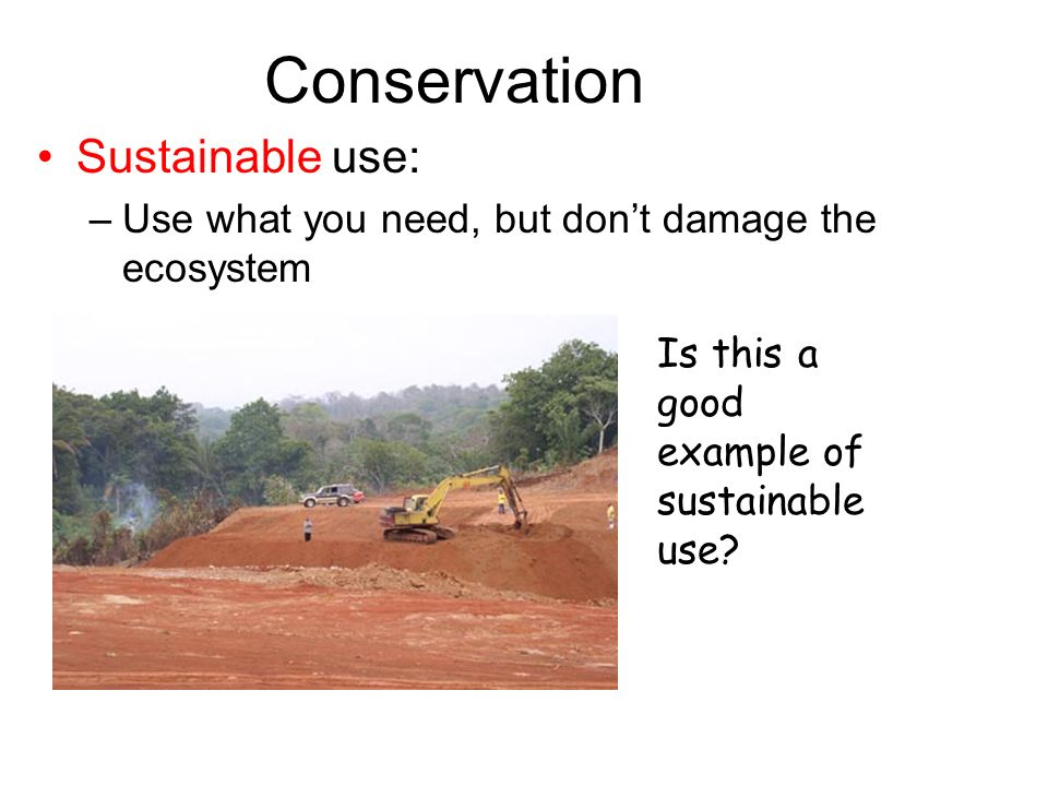 Conservation Sustainable use: –Use what you need, but dont damage the ecosystem Is this a good example of sustainable use