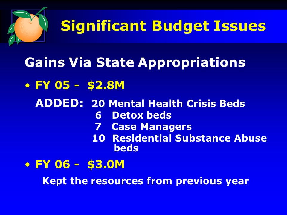 Significant Budget Issues Gains Via State Appropriations FY 05 - $2.8M ADDED: 20 Mental Health Crisis Beds 6 Detox beds 7 Case Managers 10 Residential Substance Abuse beds FY 06 - $3.0M Kept the resources from previous year