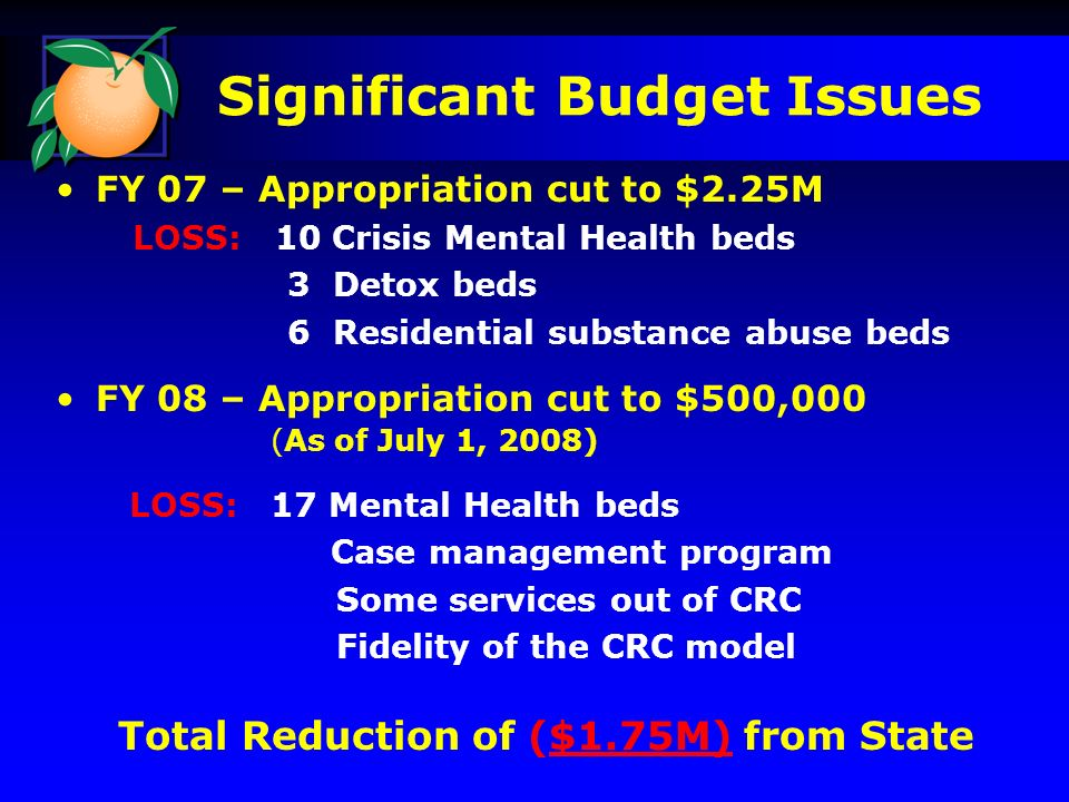 Significant Budget Issues FY 07 – Appropriation cut to $2.25M LOSS: 10 Crisis Mental Health beds 3 Detox beds 6 Residential substance abuse beds FY 08 – Appropriation cut to $500,000 (As of July 1, 2008) LOSS: 17 Mental Health beds Case management program Some services out of CRC Fidelity of the CRC model Total Reduction of ($1.75M) from State